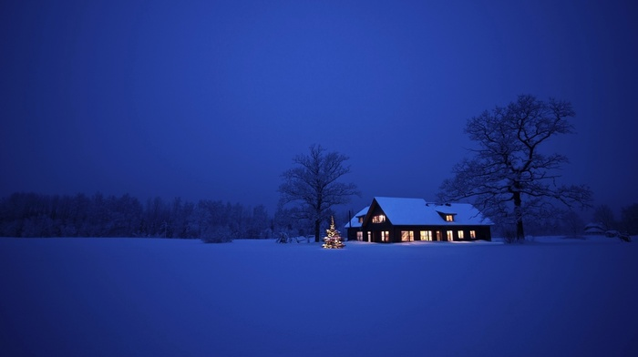 winter, house, lights, snow