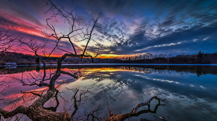 sky, water, river, trees, evening, nature, twigs, reflection
