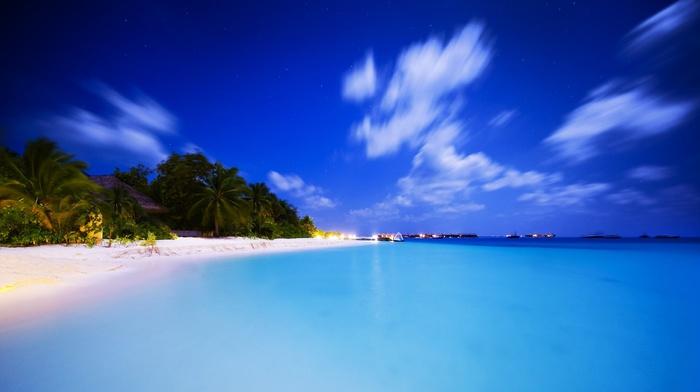 evening, island, resort, palm trees, tropics, nature, beach, summer