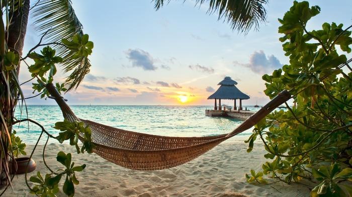 sunset, palm trees, resort, rest, sky, summer, tropics, beautiful