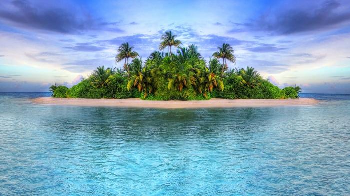 beautiful, palm trees, sunset, theme, tropics, sky, island, ocean, summer