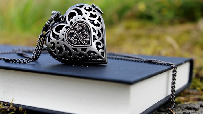 photo, heart, book, macro, stone, nature
