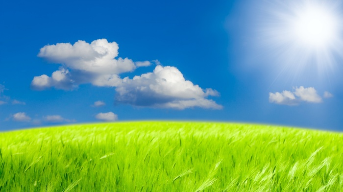 field, photoshop, Sun, summer, nature, wheat, clouds, sky, Ukraine, beautiful