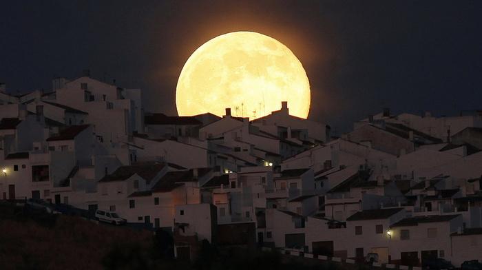 night, moon, stunner, silhouette