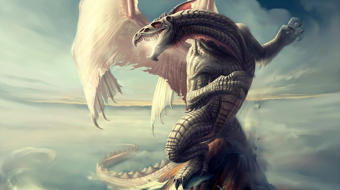 clouds, dragon