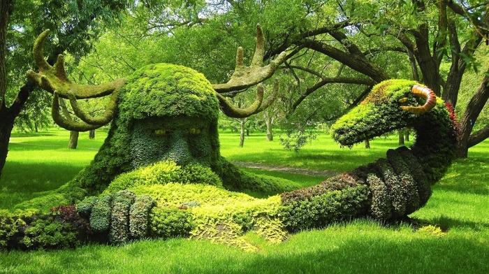 canada, парк, природа, креатив, Канада, зеленый фон