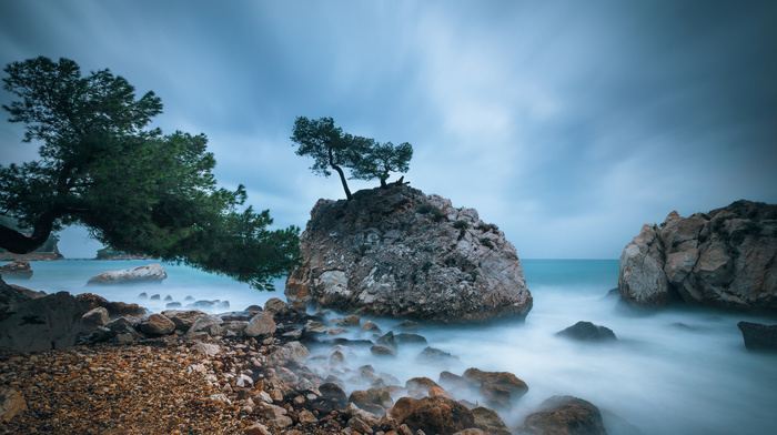 trees, rocks, stones, beach, nature, sea, clouds