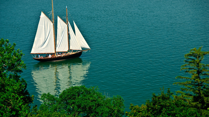 sailfish, yacht, sea, stunner, ship