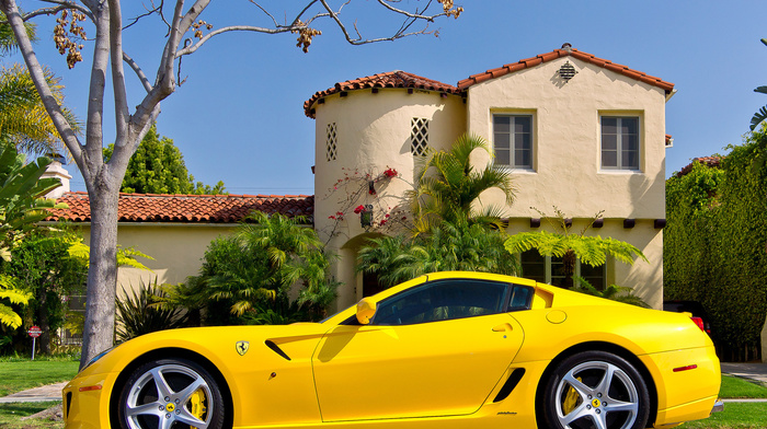 tree, Ferrari, ferrari, cars, auto, house, yellow