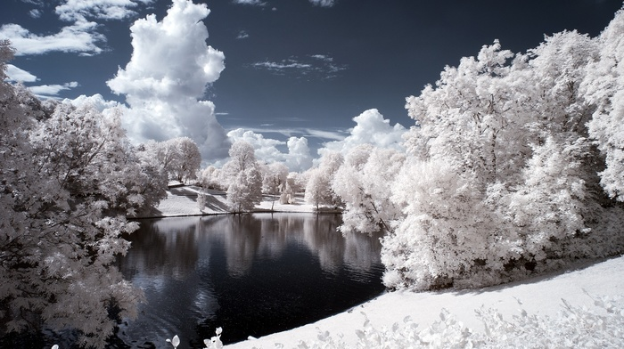 water, snow, nature, pond, trees, winter