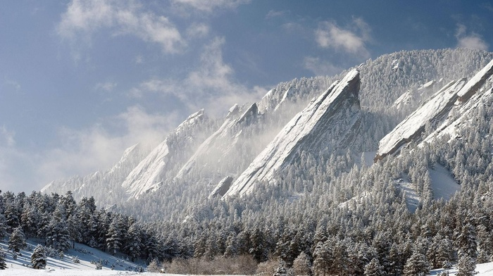 snow, trees, winter, mountain, nature