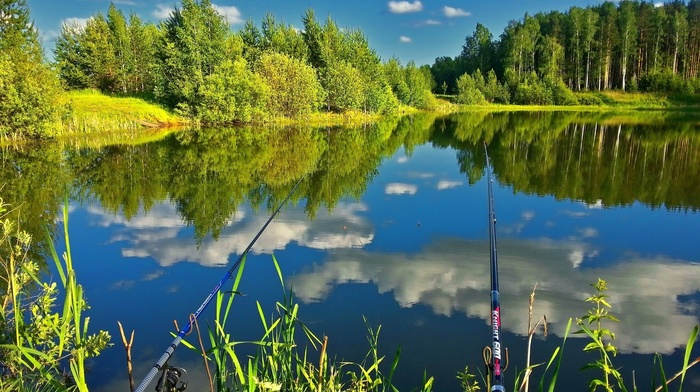 rest, trees, forest, fishing, pond, nature, summer