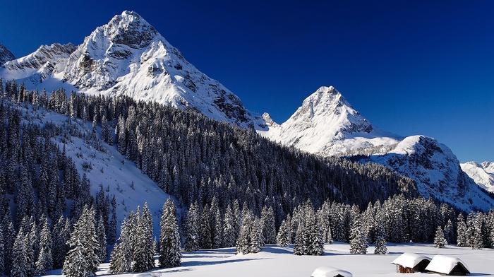 winter, nature, mountain, trees, snow