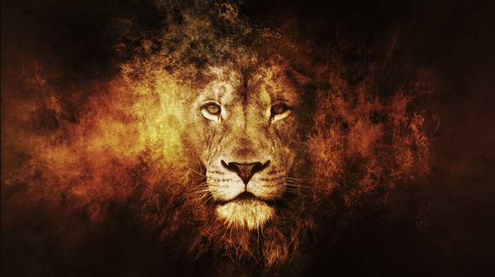 3D, photoshop, lion