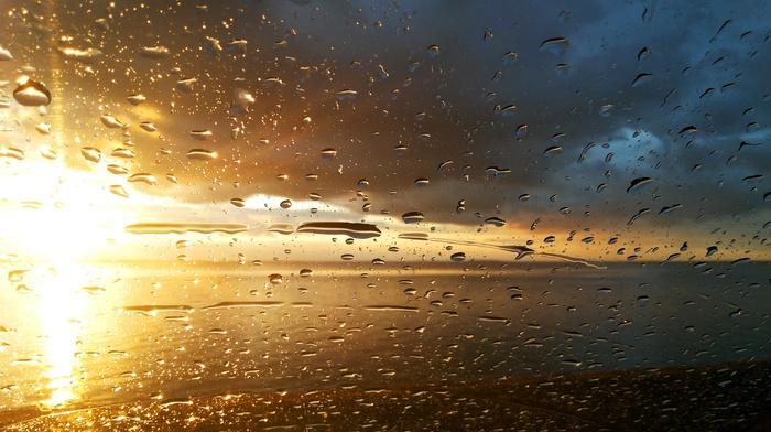 nature, drops, sunset, rain
