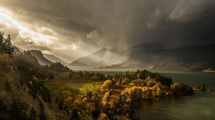 forest, autumn, rain, USA, lake, mountain, nature, cloudy, sky