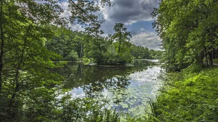 beautiful, stunner, clouds, river, forest, sky, fishing, nature, summer