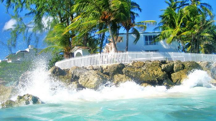 ocean, nature, surf, beauty, sky, palm trees, house