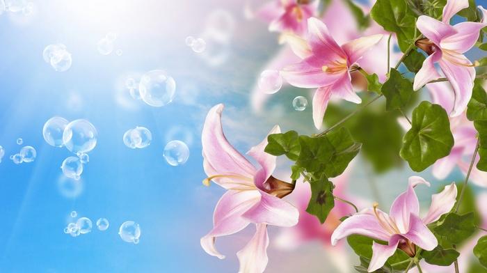 photoshop, 3D, flowers