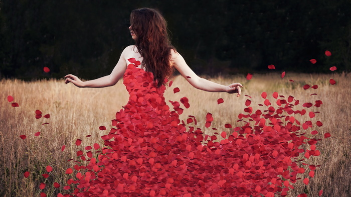 rosedress, flowers, petals, красивые