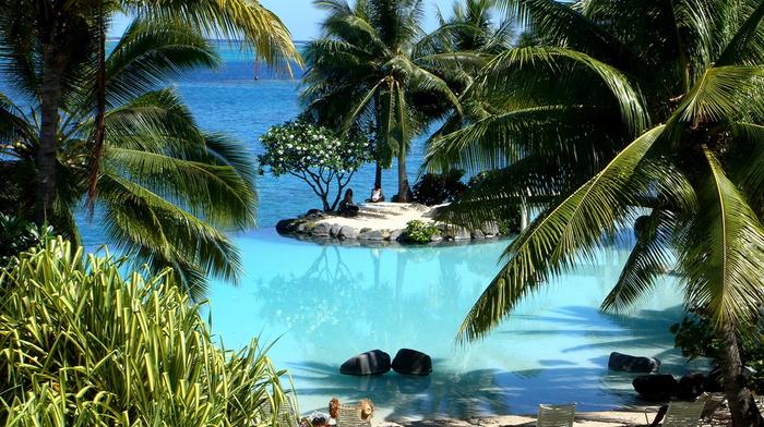 остров, красивые, красота, лагуна, остров Таити, океан, пальмы
