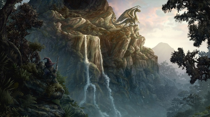 fantasy art, dragon