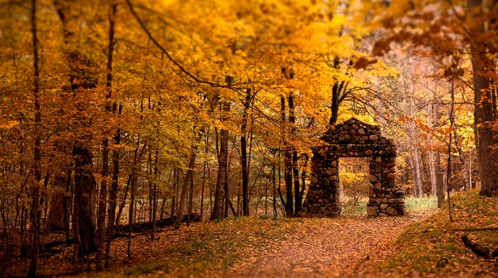 gates, ruin, gold, yellow, stones, nature, forest, lights, leaves, trees, path
