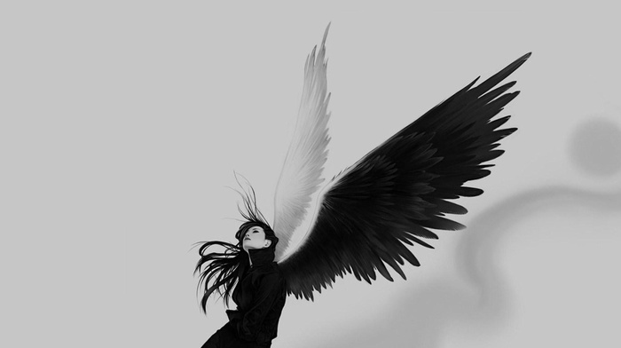angel, white, black, wings