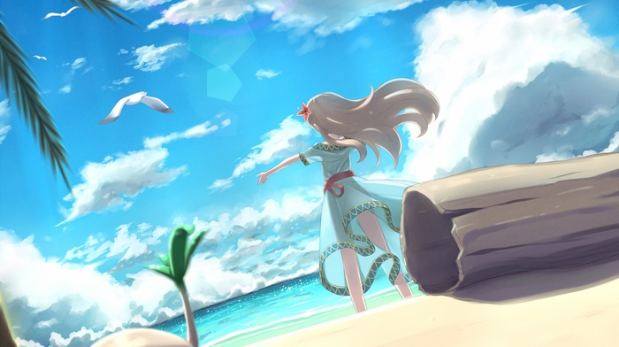 anime, beach, The Legend of Zelda, anime girls