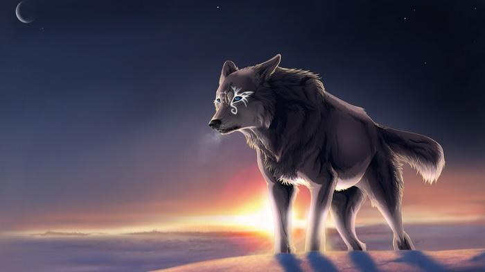 tundra, moon, wolf