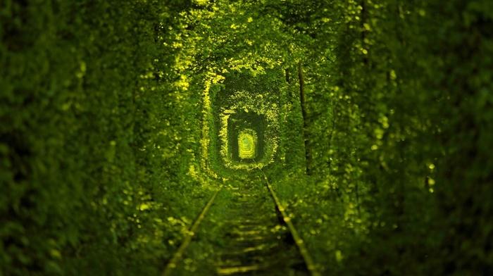 природа, Украина, железная дорога, деревья
