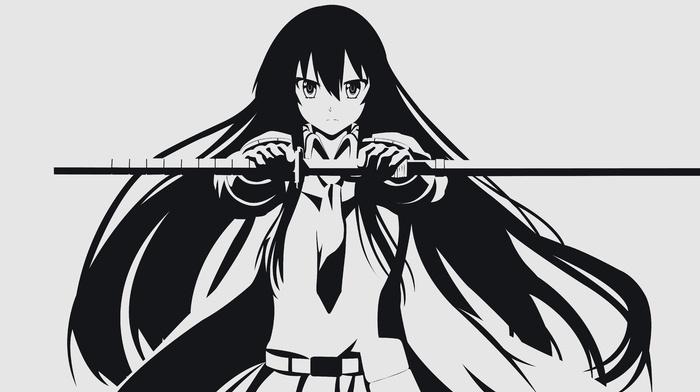anime vectors, vectors, Akame, Akame ga Kill