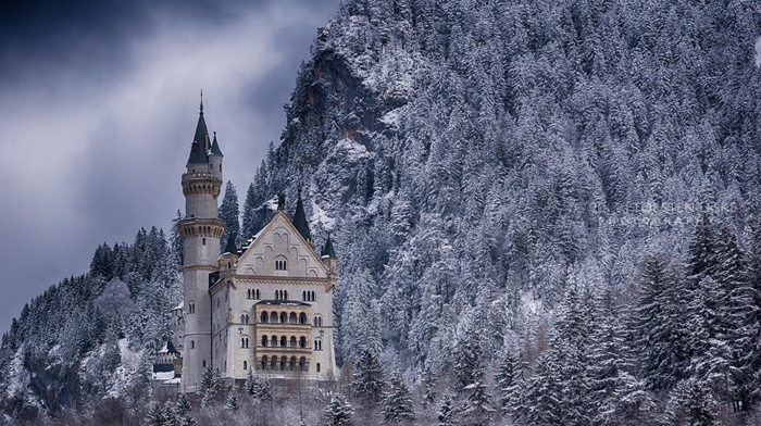 Germany, trees, nature, tower, snow, rock, forest, Neuschwanstein Castle, castle, winter, landscape, architecture, mountain
