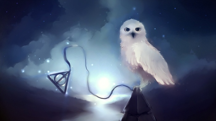Hedwig, stars, Harry Potter, apofiss, owl, night, Harry Potter and the Deathly Hallows