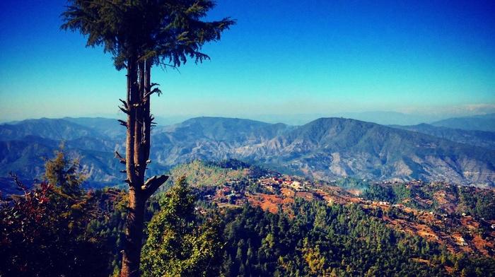 hill, trees, landscape, filter, forest, nature