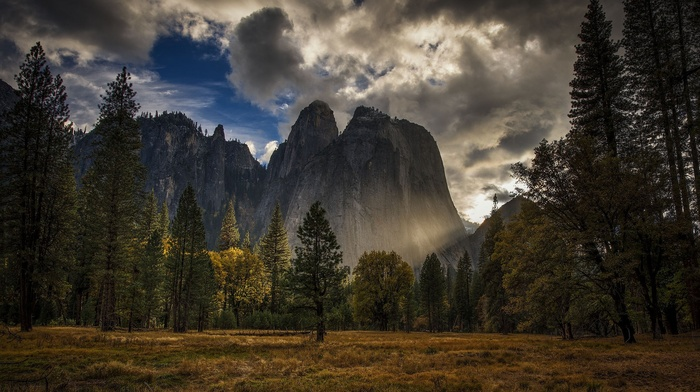 nature, field, trees, USA, HDR, mountain, landscape, sunlight, Yosemite National Park, forest, clouds, grass