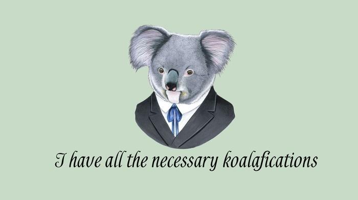 suits, simple background, minimalism, koalas, humor, quote, animals, digital art