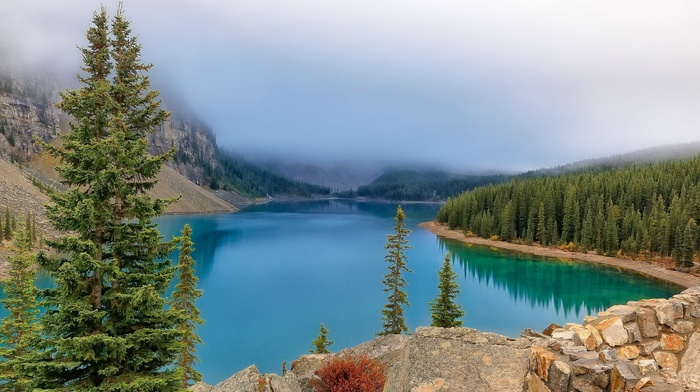 landscape, mist, Alberta National Park, Canada, lake, mountain, trees, rock, nature, forest, banff national park, reflection