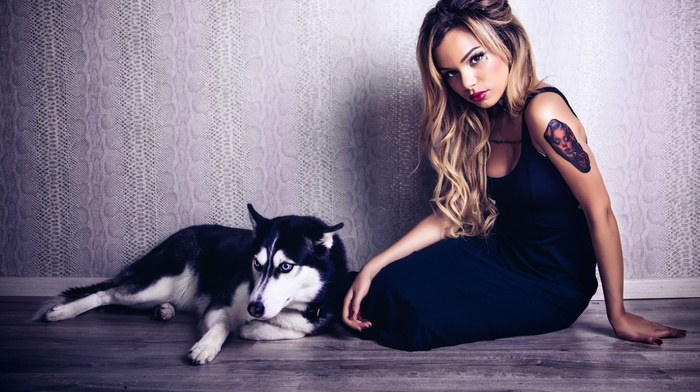 blonde, tattoo, dog, animals, sitting, black dress, siberian husky, on the floor, long hair, model, girl