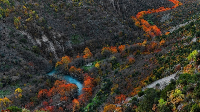 yellow, gorge, green, orange, trees, landscape, mountain, nature, river, blue, fall