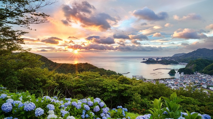 Japan, purple, ports, flowers, orange, blue, landscape, bay, hill, sunset, trees, cityscape, green, hydrangea, summer, clouds, blue flowers, nature