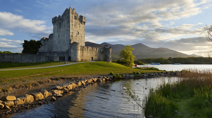 lake, forest, architecture, castle, tower, trees, bricks, grass, river, water, clouds, ship, swans, walls, stones, Ireland, hill, path, landscape, nature
