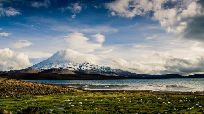 volcano, snowy peak, lake, nature, landscape, grass, clouds, Chile, mountain