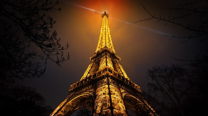 branch, France, urban, red, Paris, night, artificial lights, Eiffel Tower, monuments, black, gold