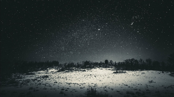 snow, star trails, stars, landscape, nature, forest clearing