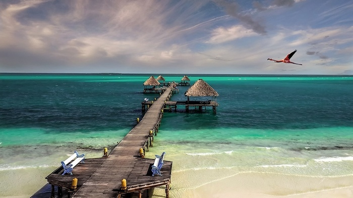sand, birds, tropical, beach, hut, sea, turquoise, walkway, landscape, Cuba, bench, nature, Caribbean, clouds