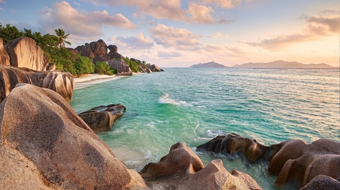palm trees, sea, sunset, beach, landscape, rock, Seychelles, summer, tropical, nature