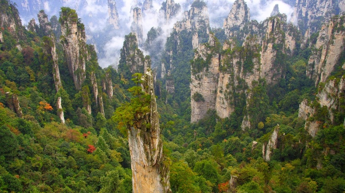 landscape, nature, trees, forest, limestone, cliff, China, mountain, Wulingyuan National Park, green, clouds