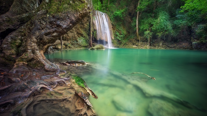 waterfall, roots, green, landscape, forest, nature, trees, Thailand, tropical