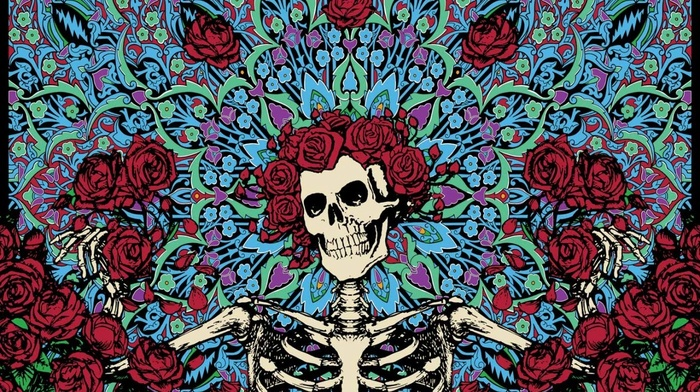 skull, rose, Dia de muertos, skeleton - wallpaper #139599